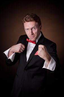 Free Elegant Man In A Tuxedo Stock Photography - 30413222