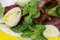 Free Greens Salad Royalty Free Stock Photo - 30419615