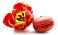 Free Tulip With Macaroon Stock Photography - 30427572