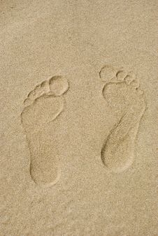 Free Traces On Sand Royalty Free Stock Photos - 30432198