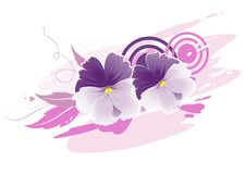 Free Violets Royalty Free Stock Image - 30434096