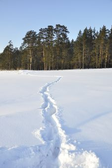 Free Winter Landscape. Royalty Free Stock Image - 30448966