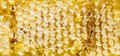 Free Honeycomb Stock Images - 30458374