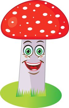 Free Red Mushroom. Royalty Free Stock Photography - 30479397