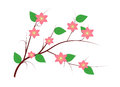 Free Decorative Spring Branch Royalty Free Stock Photography - 30484917
