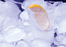 Free Vodka Royalty Free Stock Photography - 30485227
