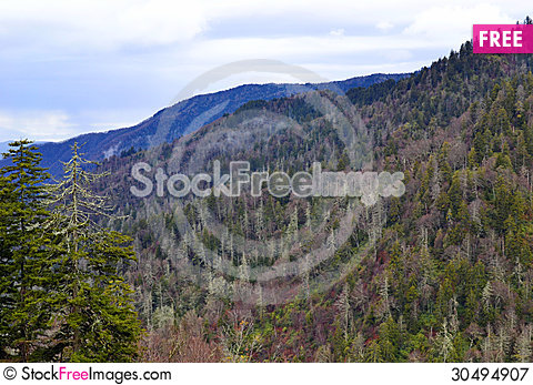 Free Smoky Mountains Royalty Free Stock Photography - 30494907