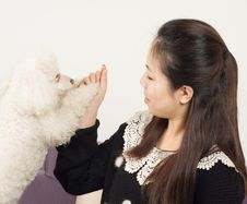 Free Women And Poodle Stock Photos - 30494983