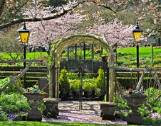 Free Iron Gate Under The Cherry Blossom Royalty Free Stock Image - 30496356