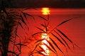 Free Sunset Stock Photo - 3059500