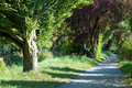 Free Footpath In The Park/river Royalty Free Stock Images - 3059869