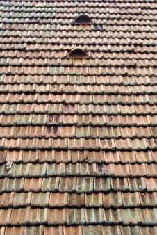 Free Dutch Tiles On The Roof Stock Images - 3050194