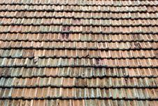Dutch Tiles On The Roof Royalty Free Stock Photography