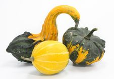 Free Three Colorful Pumpkins Stock Image - 3053521