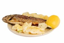 Free Fish Lunch Stock Photos - 3054033