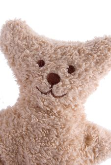 Free Portrait Of A Teddy Bear Royalty Free Stock Photos - 3054978