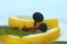 Free Two Grapes On The Lemon Stock Images - 3055774