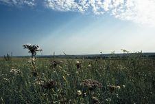 Free Vibrant Landscape Royalty Free Stock Photos - 3058058