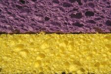 Free Yellow And Purple Sponges Stock Images - 3059084