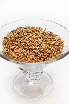Free Wheat Grain Royalty Free Stock Photos - 30501588