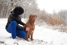 Obedience Dog And His Owner Royalty Free Stock Photo