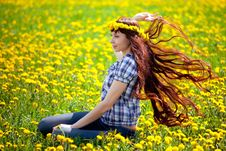Free The Queen Of Dandelions Royalty Free Stock Photos - 30513308