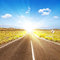 Free Asphalt Road To The Sun Royalty Free Stock Image - 30515126