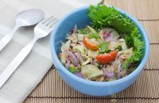Free Tuna Salad Stock Photo - 30527730