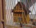 Free Yellow Post Box Stock Photography - 30531182