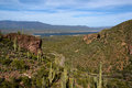 Free Cactus On Tonto National Monument Royalty Free Stock Images - 30538109