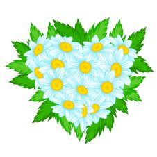 Free Heart Of Daisies Stock Images - 30535474