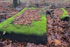 Free Abandoned Mattress Stock Photo - 30537260