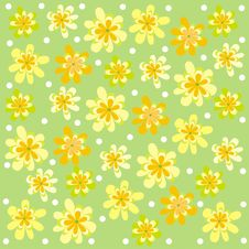 Free Yellow Flowers Stock Images - 30548424