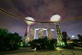 Free Gardens By The Bay - Singapore Stock Photo - 30551890