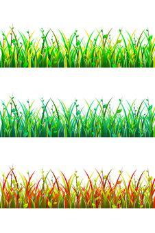 Free Grass 3D Stock Image - 30550881