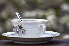 Free Teacup Royalty Free Stock Photography - 30551147