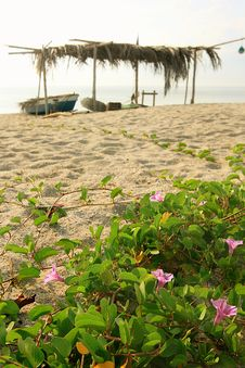 Fishing Village 2 Royalty Free Stock Image