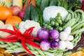Free Fresh Fruits And Vegetables Stock Photography - 30569412