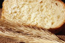 Free Bread And Wheat Ears Royalty Free Stock Images - 30561889