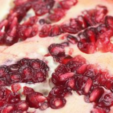Pomegranate &x28;details&x29; Royalty Free Stock Image