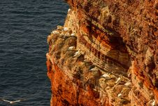Helgoland - German Island In The North Sea Stock Photos
