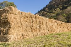 Free Field With Bales Of Hay Royalty Free Stock Images - 30569299