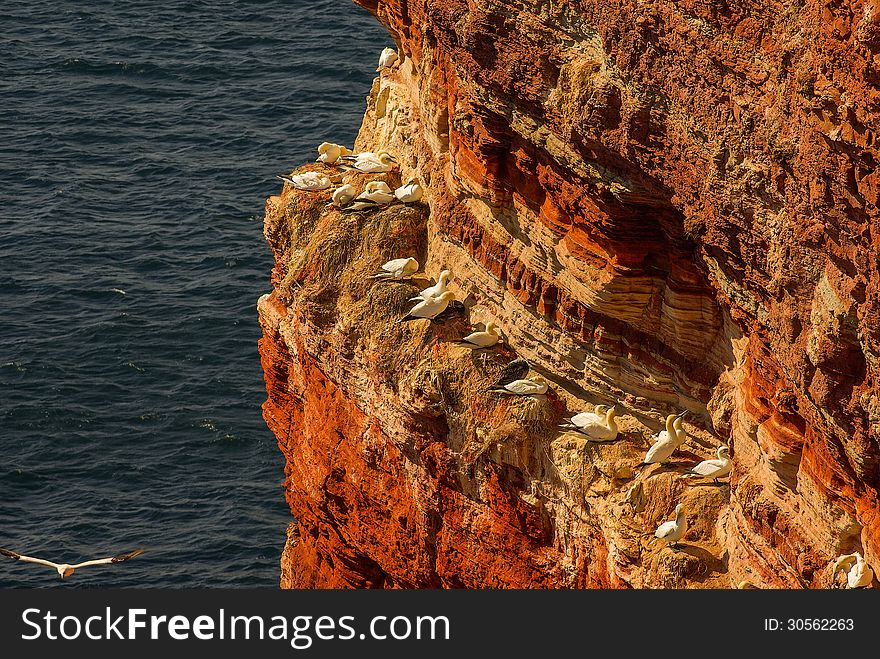 Helgoland - German island in the North sea