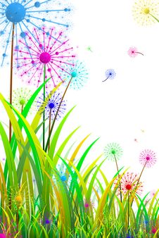 Free Flowers Royalty Free Stock Photography - 30571897