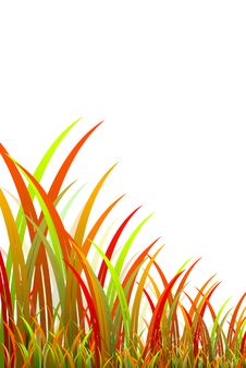 Free Grass 3D Royalty Free Stock Photo - 30571945