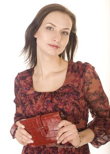 Free Portrait Of Beauty Young Woman With Hand Bag Isolated Stock Photography - 30587002