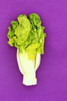 Free Bok Choy Royalty Free Stock Images - 30587579