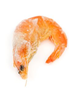 Free Frozen Shrimp Royalty Free Stock Images - 30591329