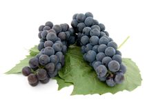 Free Dark Grape With Leaf Royalty Free Stock Image - 3060796