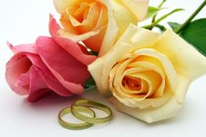 Free Rings And Rose Stock Images - 3060994